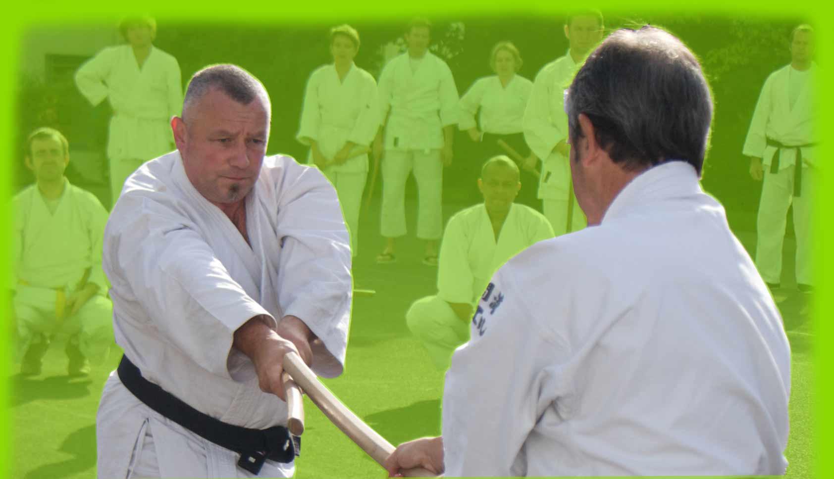 Stage Aikido Serge Maniey