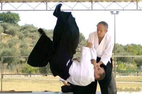 demonstration aikido 2011