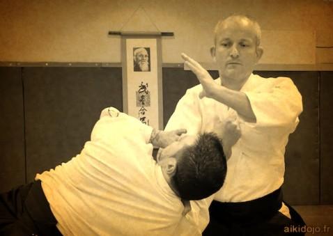 Stage Aikido - Ajaccio 02/2013