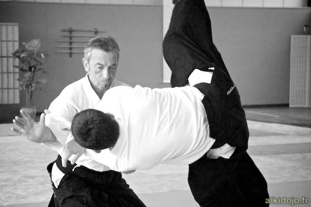 Stage Aikido - Auray 2013