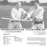 2014-10-Stage-Savalli-Champigneulles