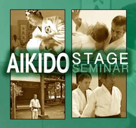 stage-aikido