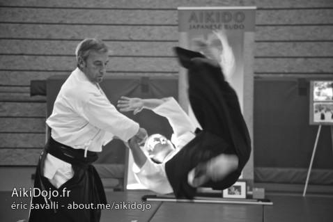 Stage Aikido - AIKI DOJO AZUR 01/2015 - Daniel TOUTAIN© E.Savalli