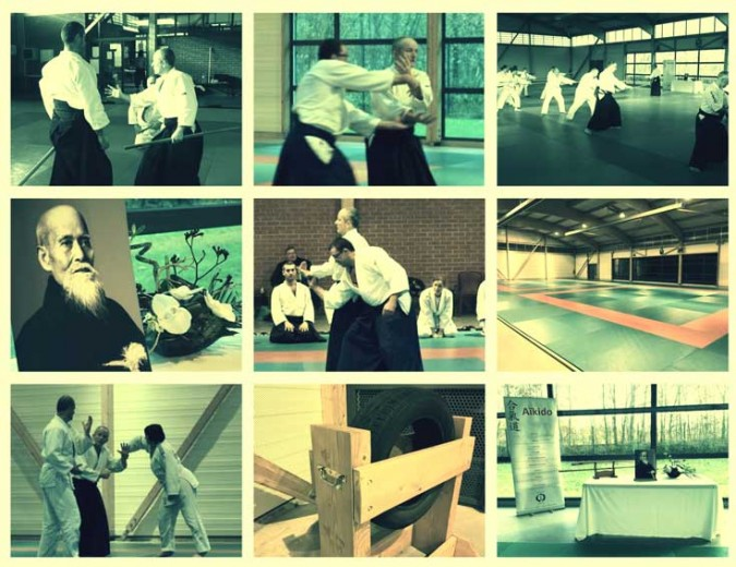 2014-marchiennes-aikido