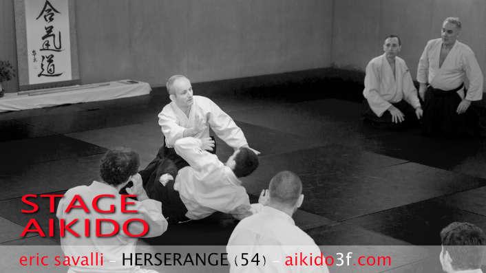 Stage Aikido avec Eric Savalli - Aikido3F - Harcourt