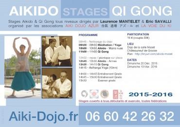 2015-2016-Aikido-QiGong-ADA