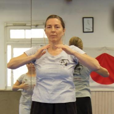 Stage Aikido - Aiki Dojo Azur - Eric Savalli / Laurence Mantelet / Yvon Ambroise - 12/2015