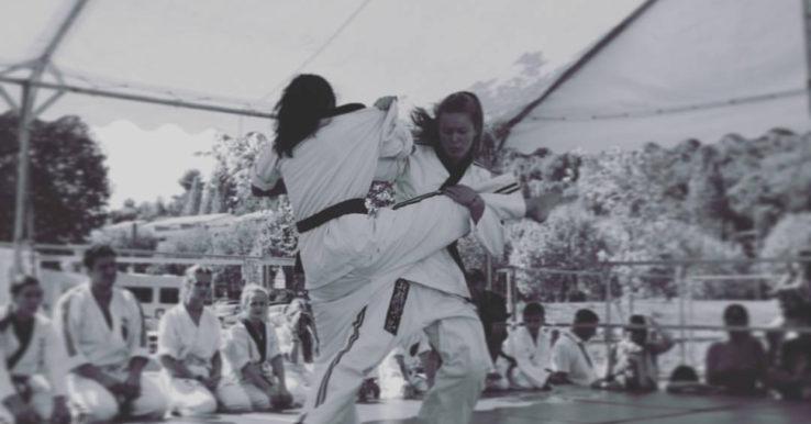 Démonstration de Jujitsu Kobudo - 2017