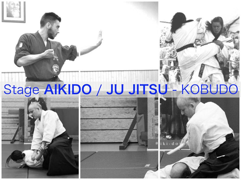 Stage Ju-jitssu - Aikido - Kobudo