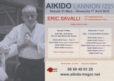 thumbnail of 2018-stage-aikido-lannion