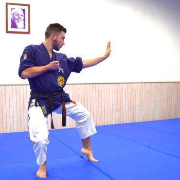 Valentin Fuster / Jujitsu kobudo / 06