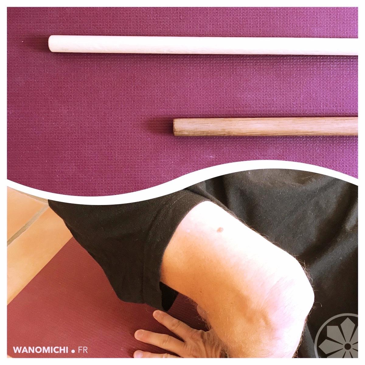 Entrainements en ligne - Aikido et Tonicité/Souplesse -