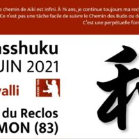 06/2021: Stage«aiki-Gasshuku»